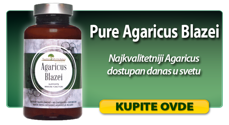 product_banners_Agaricus_Blazei